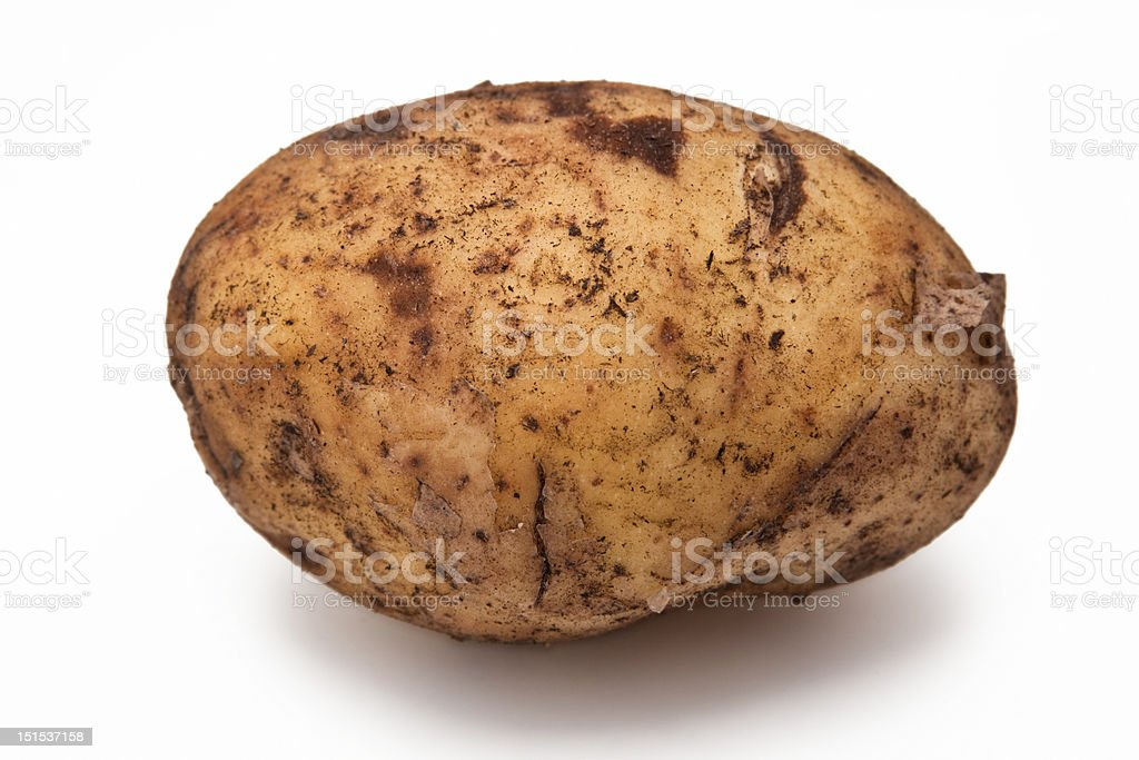 Potato isolated royalty-free stock photo