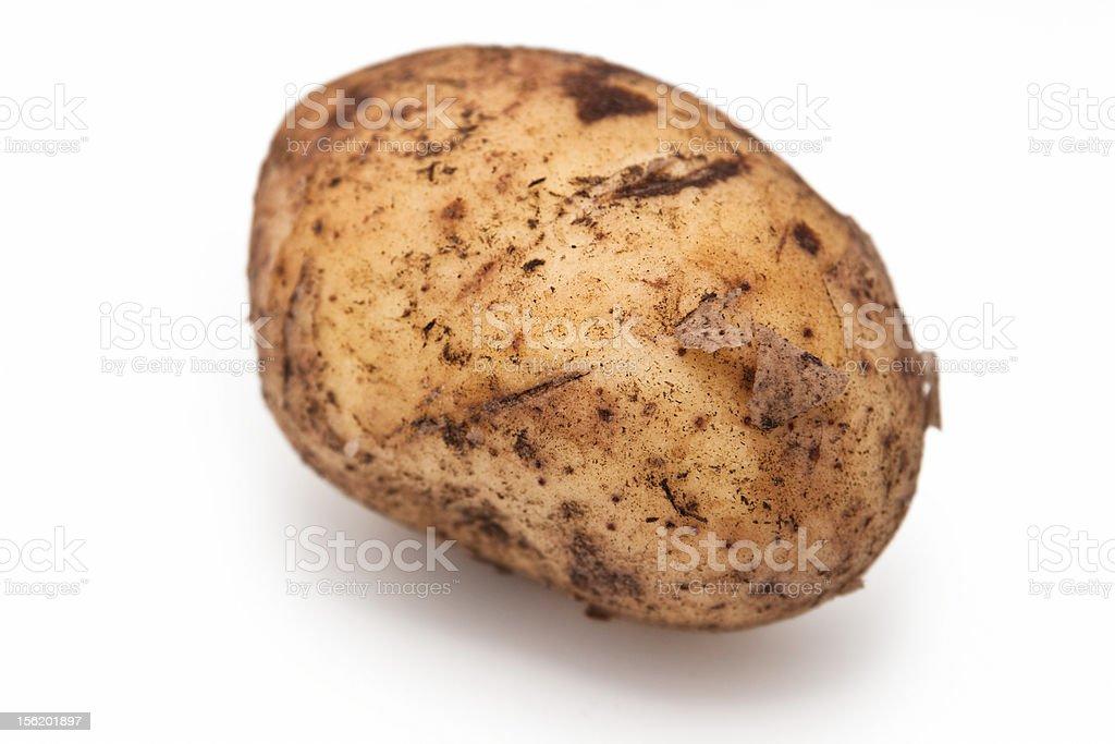 Potato isolated royalty-free stock photo