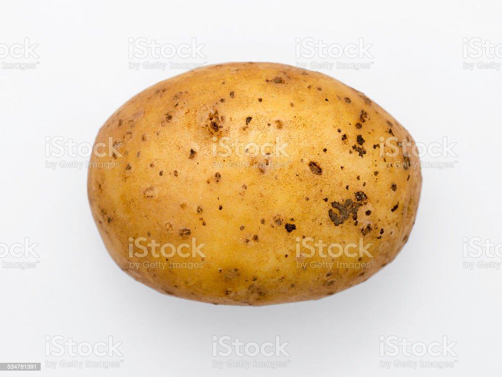 potato isolated stock photo
