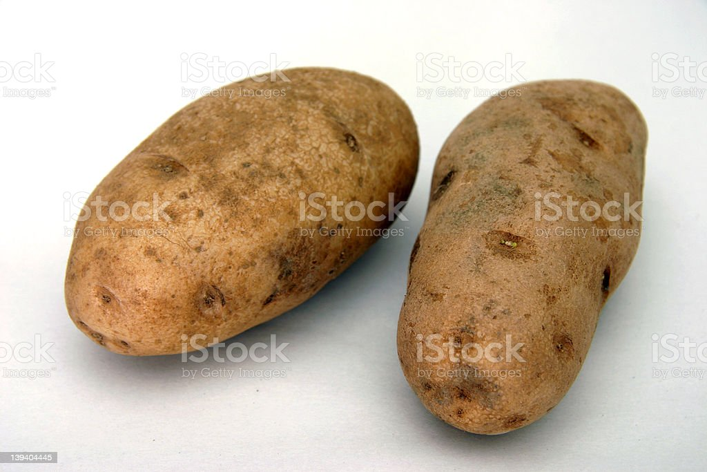 Potato royalty-free stock photo