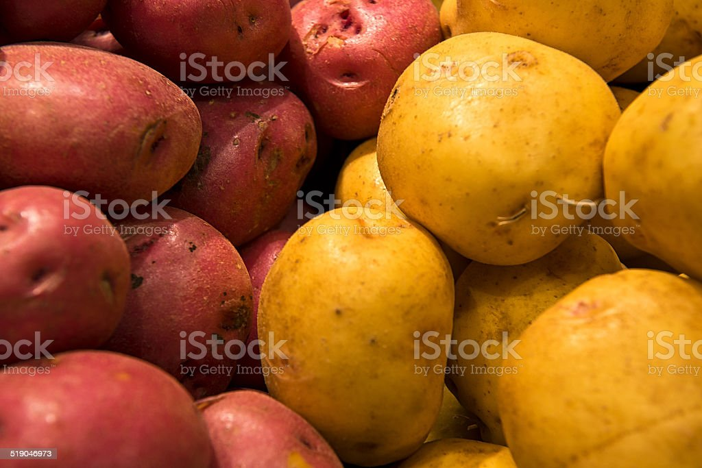 Pomme de terre stock photo