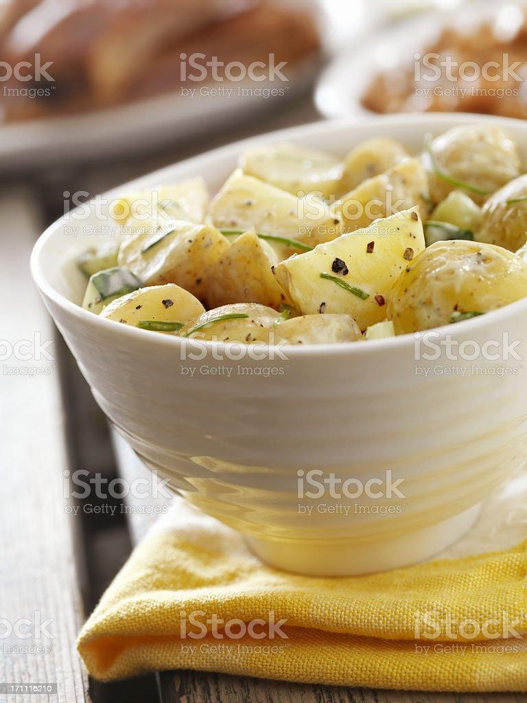 Potato Salad at a Picnic royalty-free stock photo