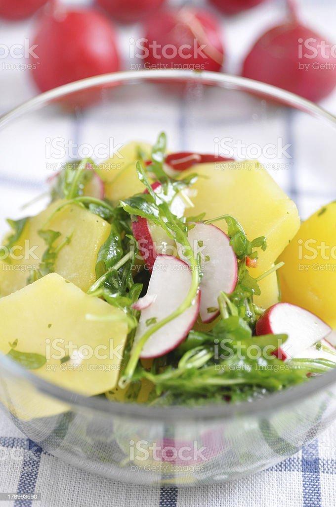 Potato Salad with red radish royalty-free stock photo