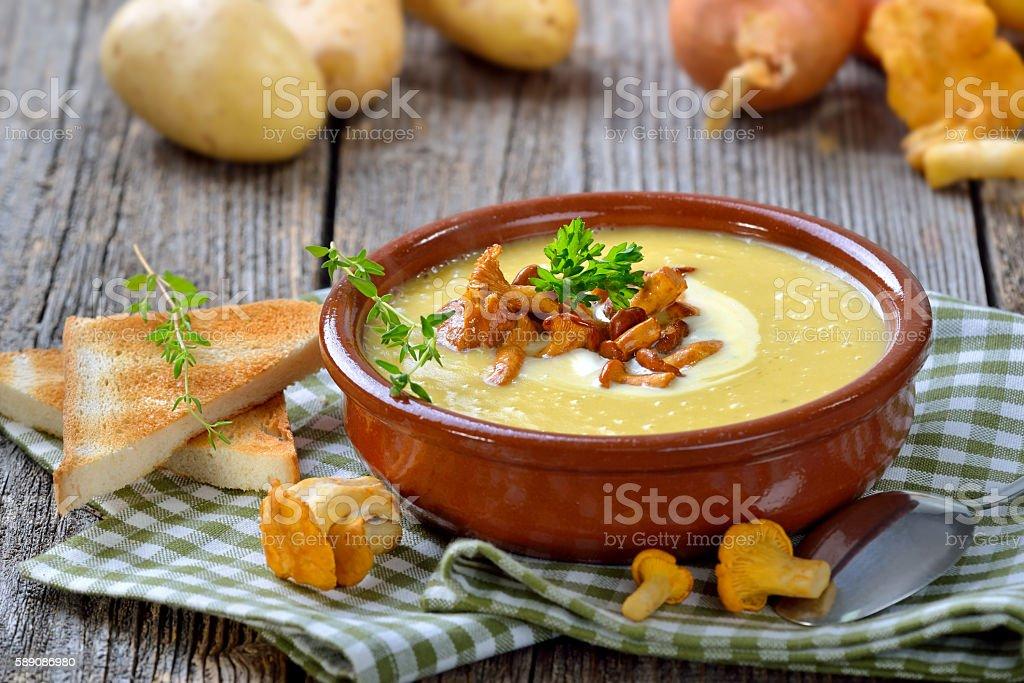 Potato soup with mushrooms stock photo