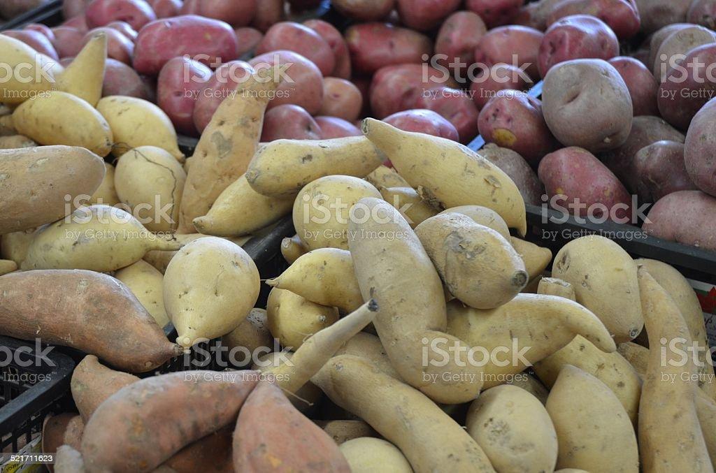 Potato Varieties stock photo