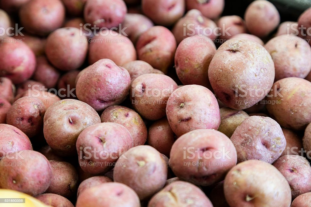 Potatoe stock photo