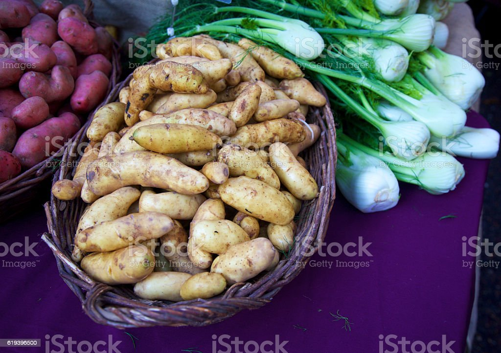 potatoes and fennel stock photo
