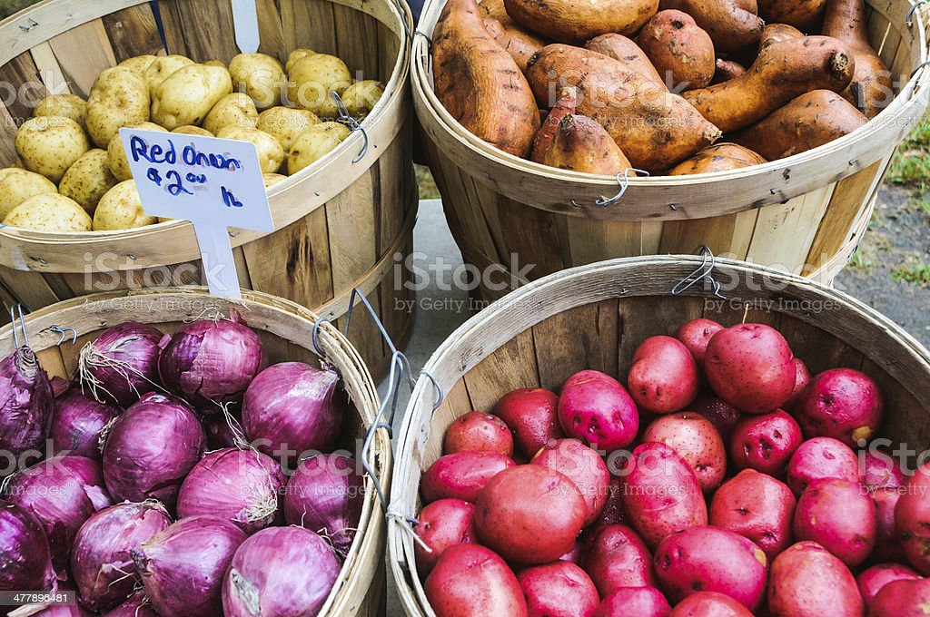 Potatoes and Onions royalty-free stock photo