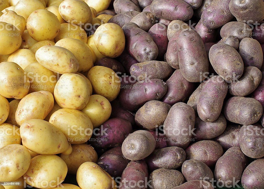 Potatoes at Farmers Market stock photo