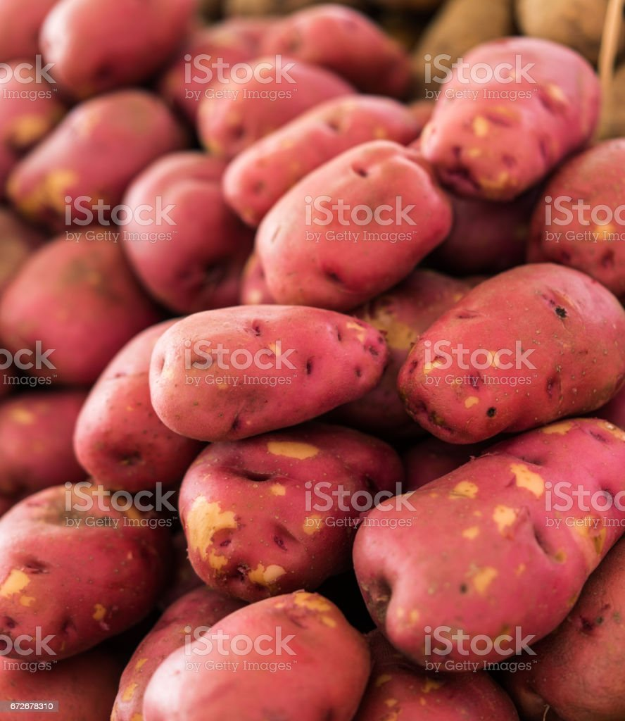Potatoes farmers market stock photo