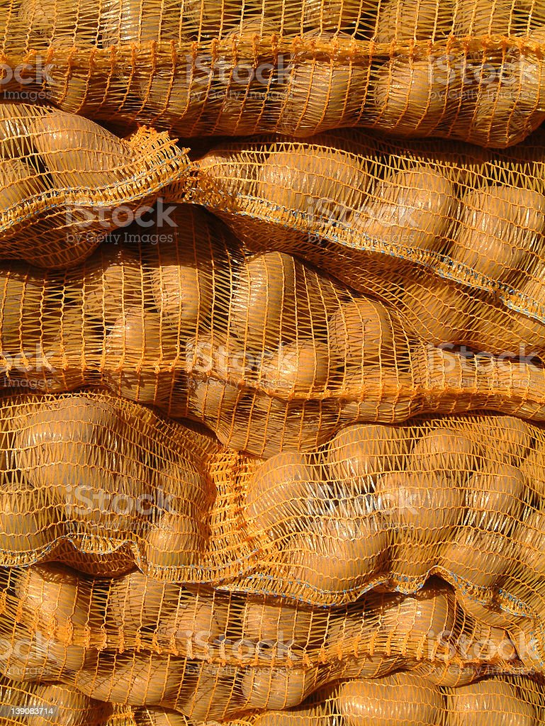 Potatoes in nets royalty-free stock photo