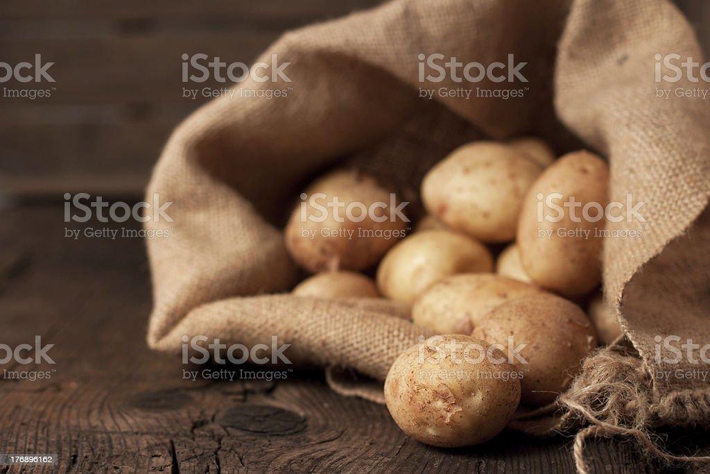 Potatoes in sack royalty-free stock photo