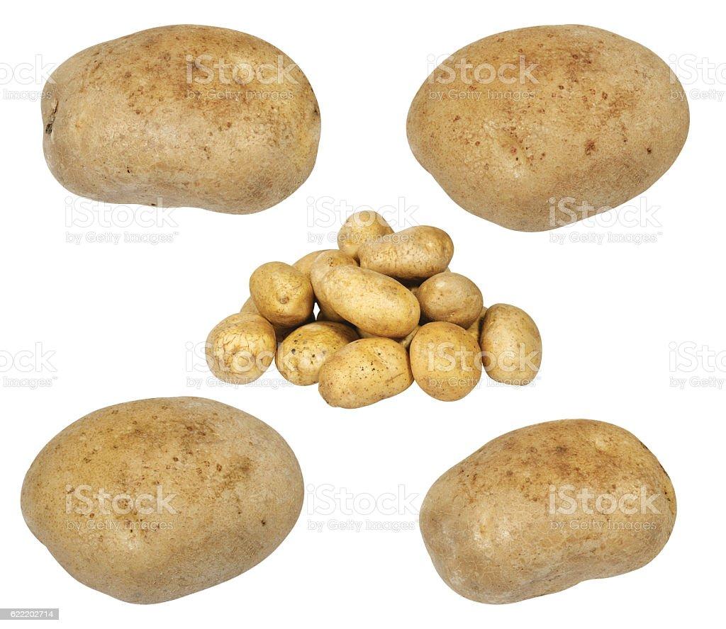 Potatoes isolated on white stock photo