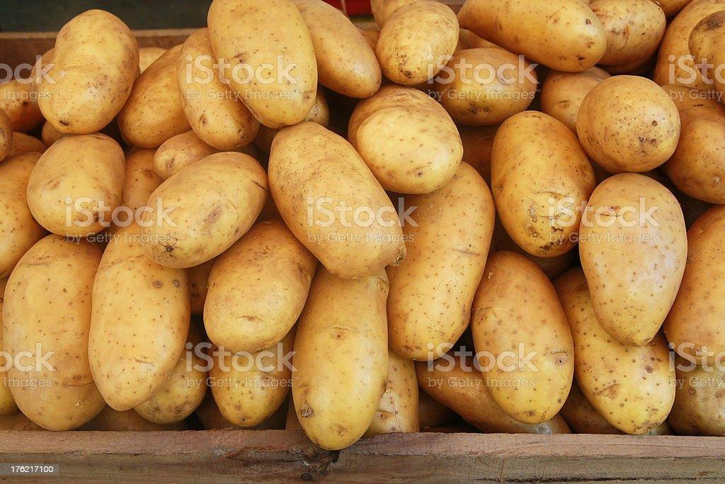 potatoes royalty-free stock photo