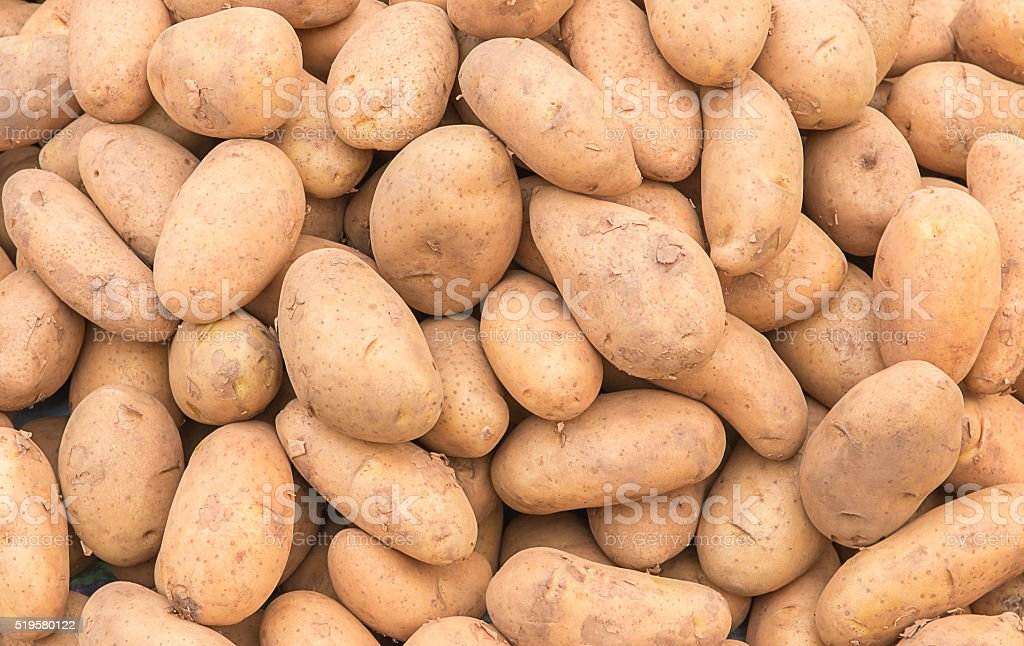 potatoes raw vegetables stock photo