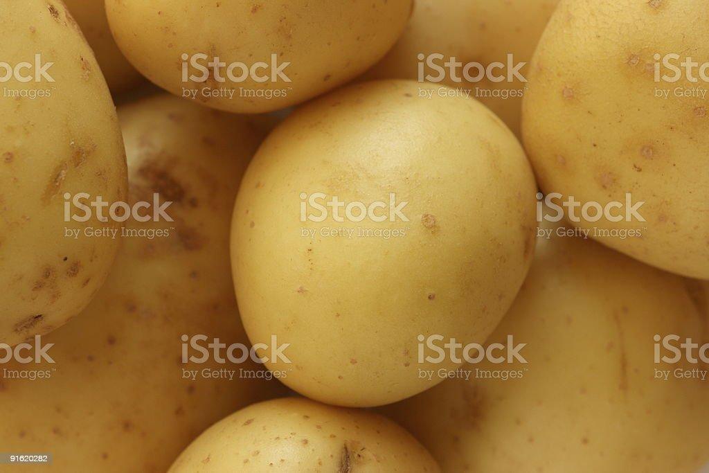 Potatoes ready for peeling royalty-free stock photo