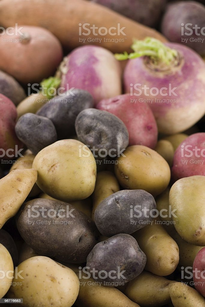 Potatoes & Roots stock photo
