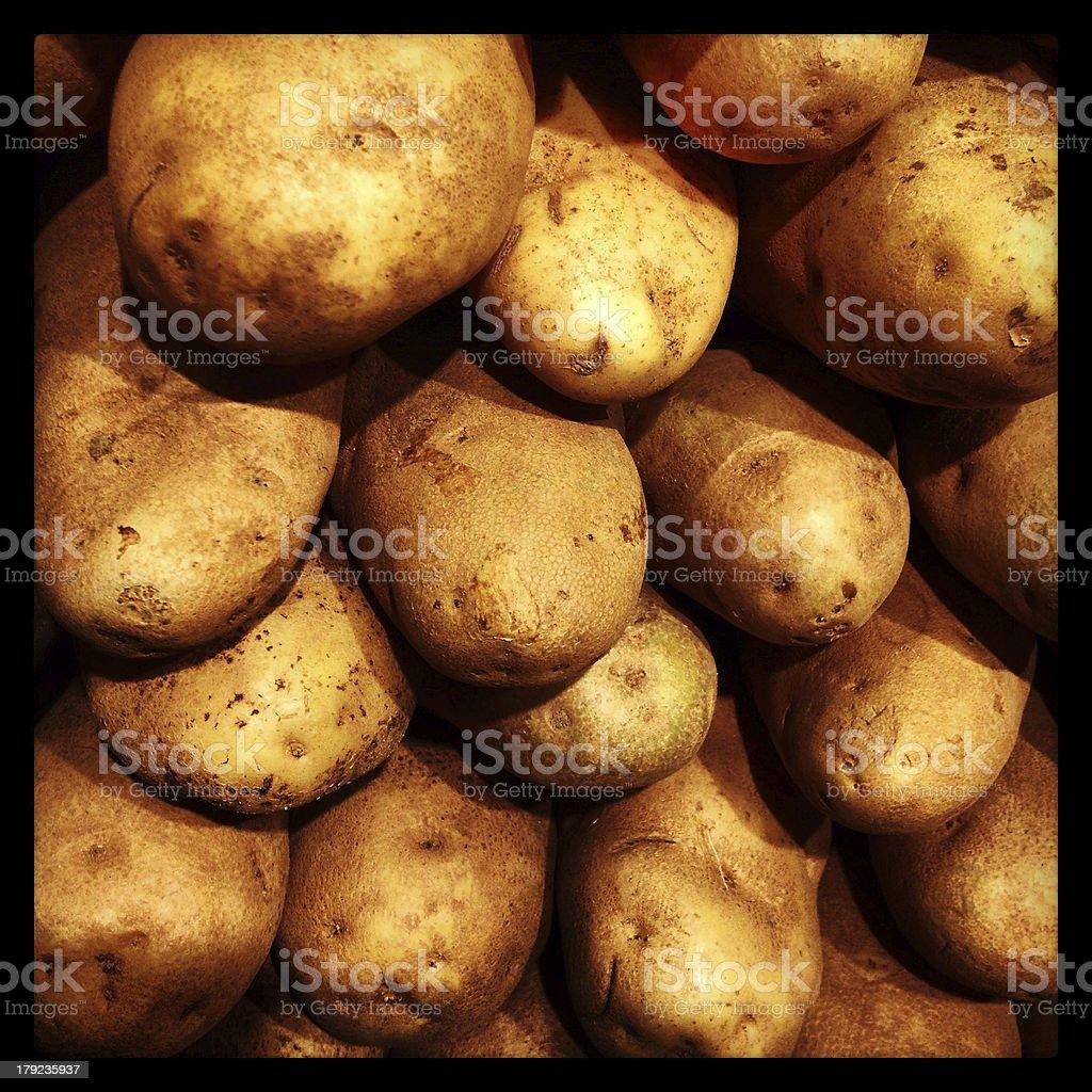 Potatoes Up Close royalty-free stock photo