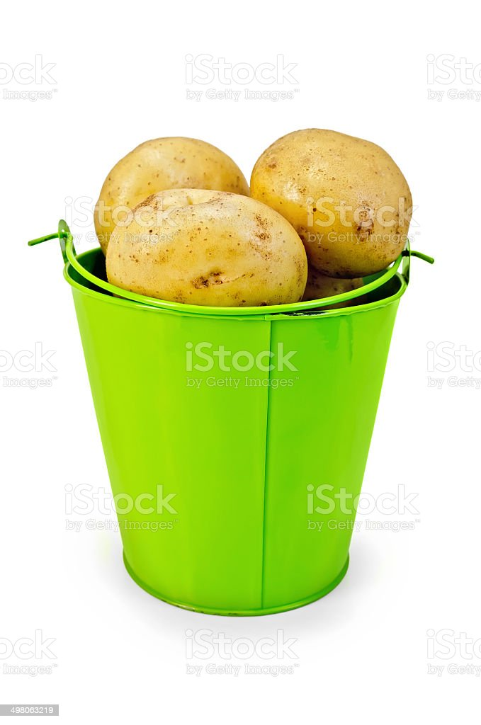 Potatoes yellow in a green bucket royalty-free stock photo