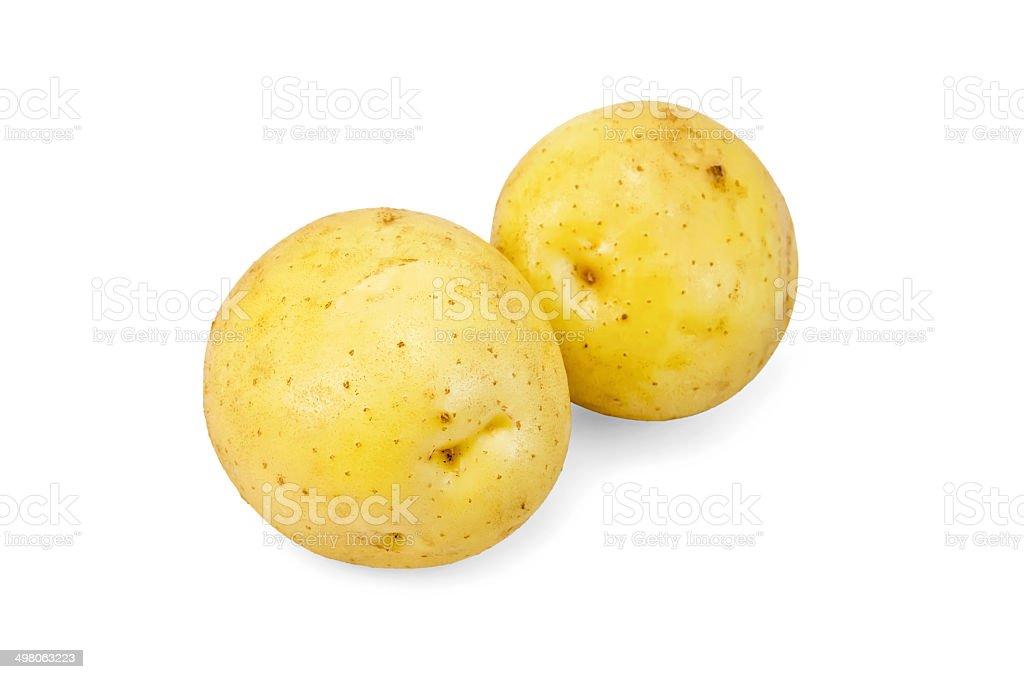 Potatoes yellow new royalty-free stock photo