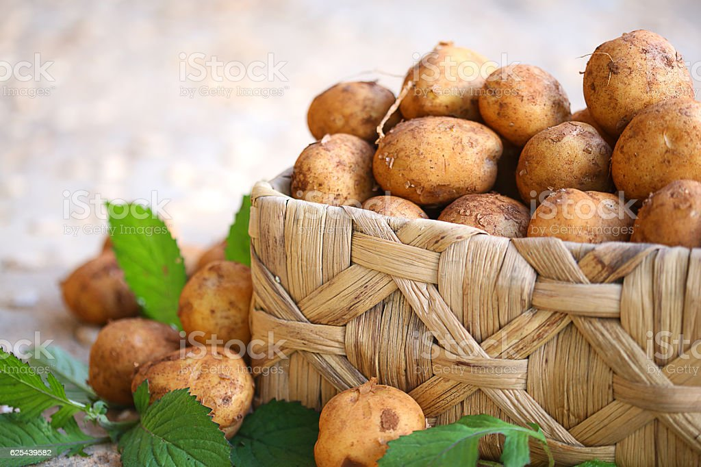 Potatos in basket stock photo