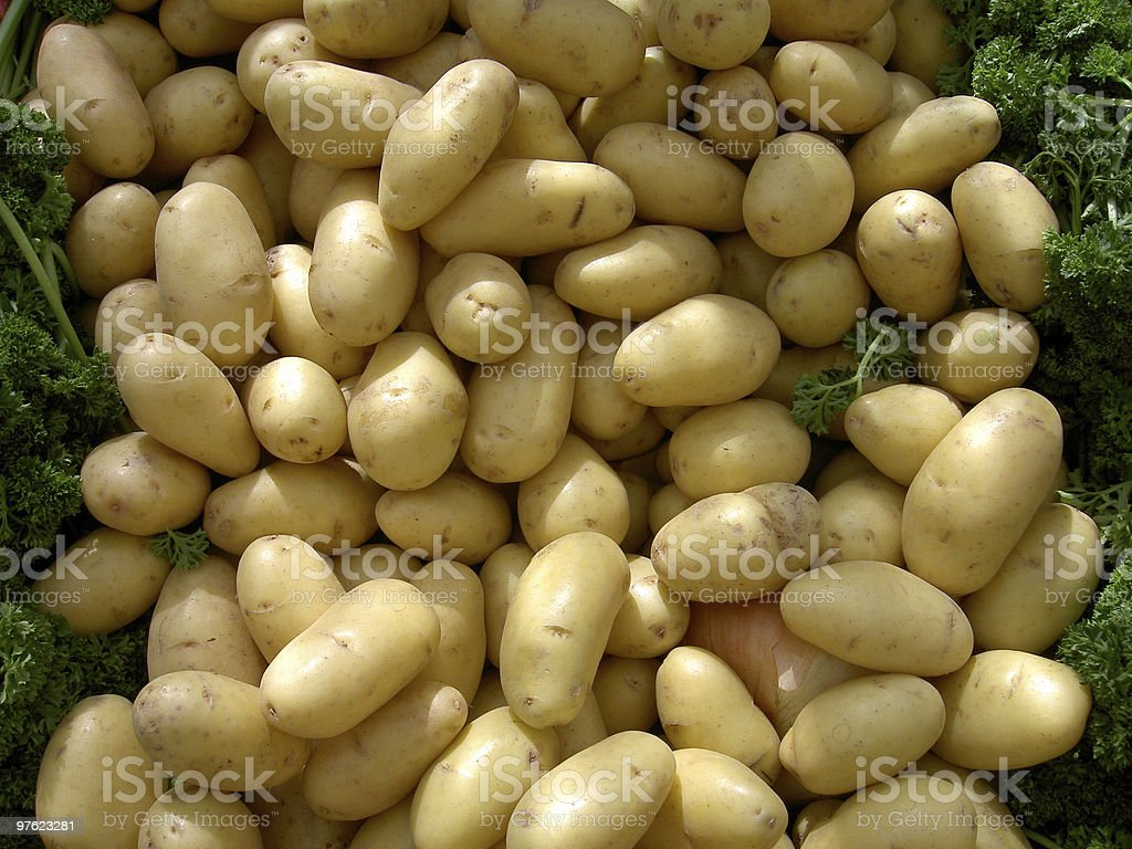 Potatos in outdoor market stock photo