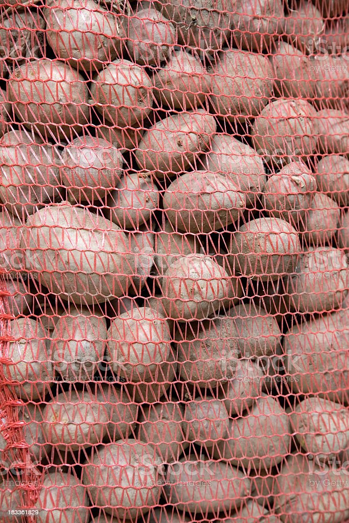 Potatos in the bags royalty-free stock photo
