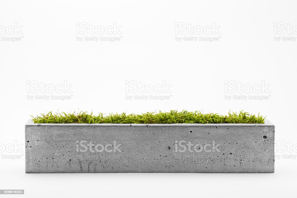 Pots of concrete stock photo
