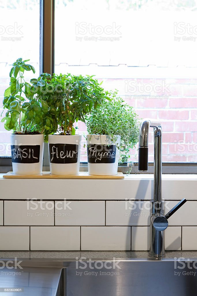 Pots of herbs on contemporary kitchen window sill vertical stock photo