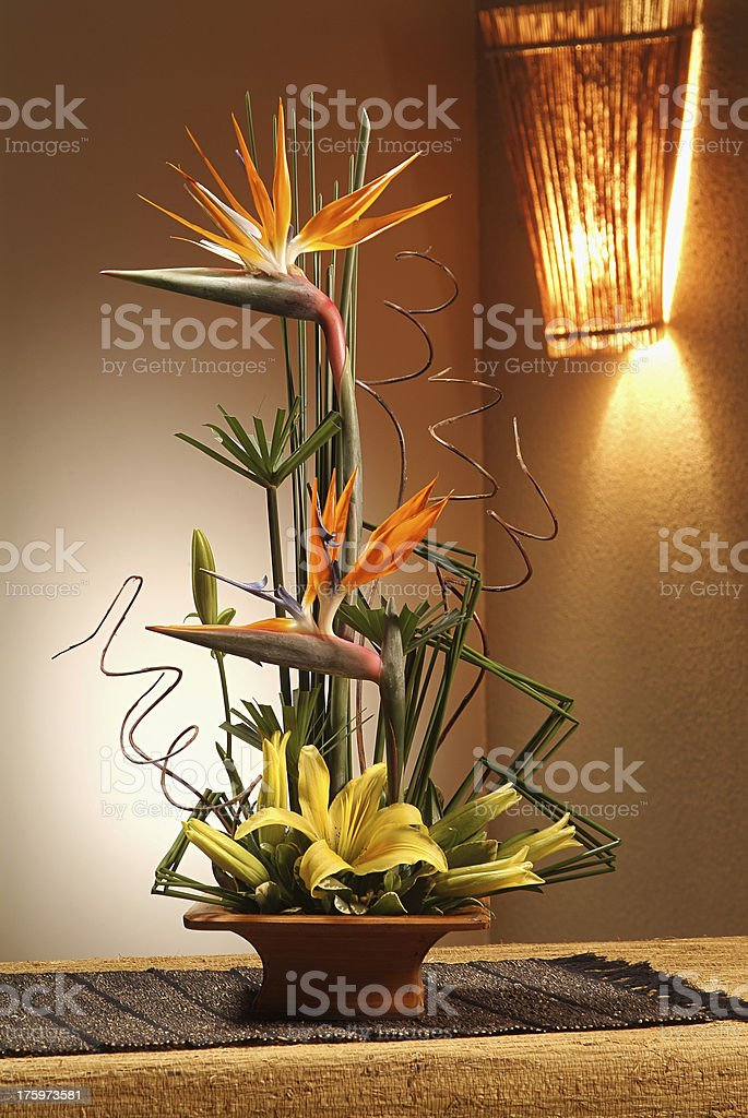 Potted birds of paradise arrangement decorating a desk stock photo