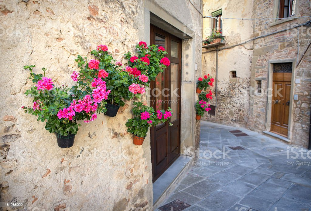 Potted geraniums on a wall in Anghiari, Tuscany Italy stock photo