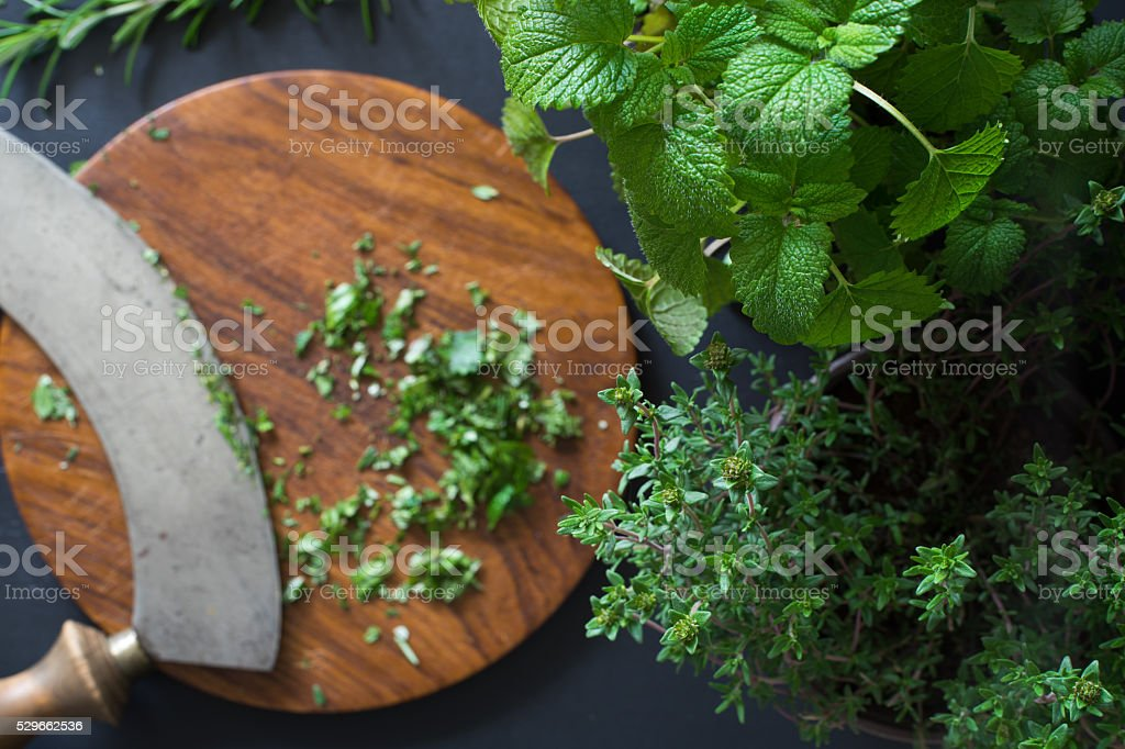 Potted lemon balm and thyme stock photo