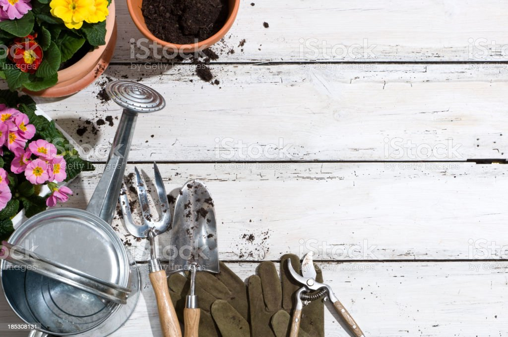 Potting plants and garden tools on patio floor stock photo