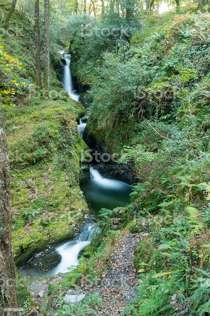 Poulanass Waterfall in Wicklow Mountains National Park, Ireland. stock photo