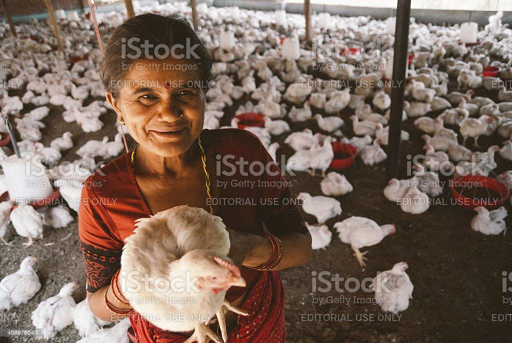 Poultry farmer woman stock photo