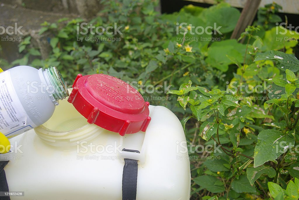 pouring hazardous chemical into plastic canister stock photo