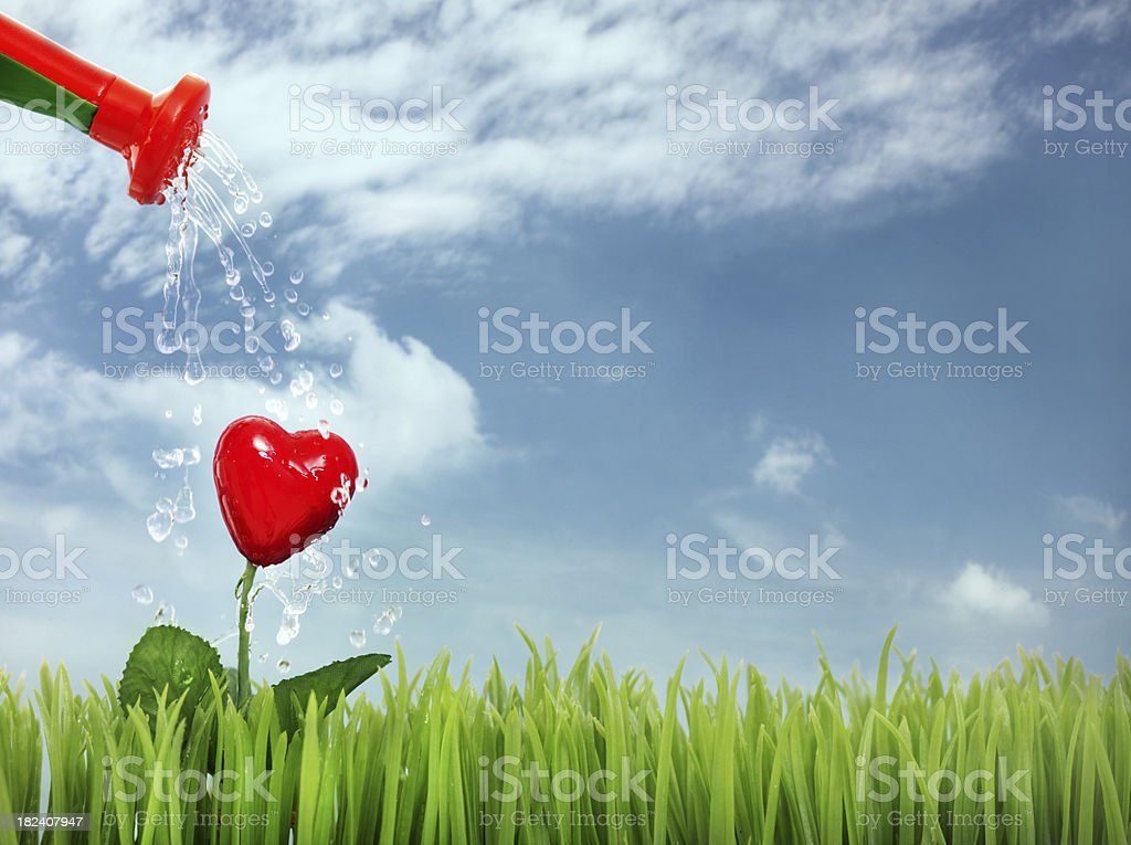 Pouring heart royalty-free stock photo