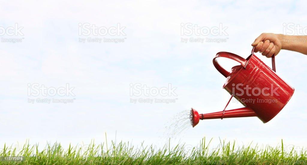 Pouring stock photo