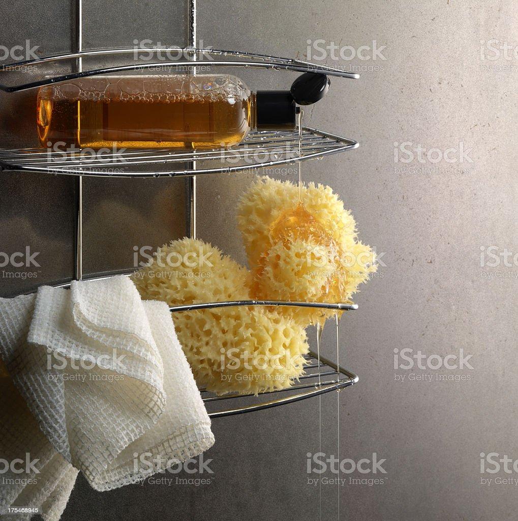 Pouring Shampoo stock photo