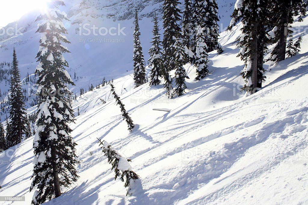 Powder Day In The Mountains royalty-free stock photo