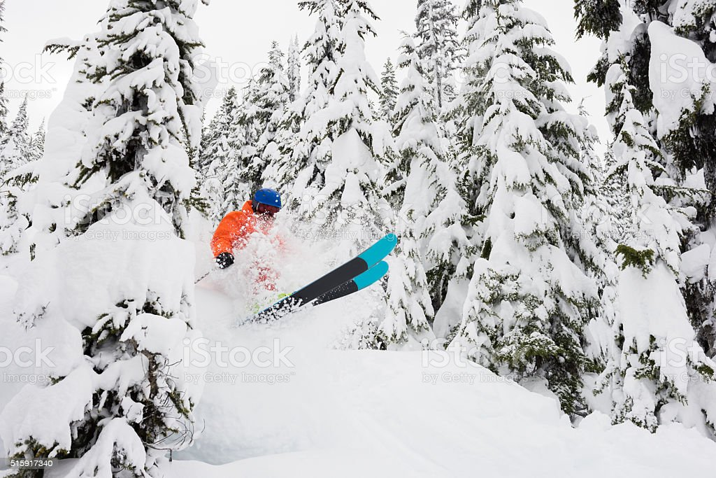 Powder skiing in the trees stock photo
