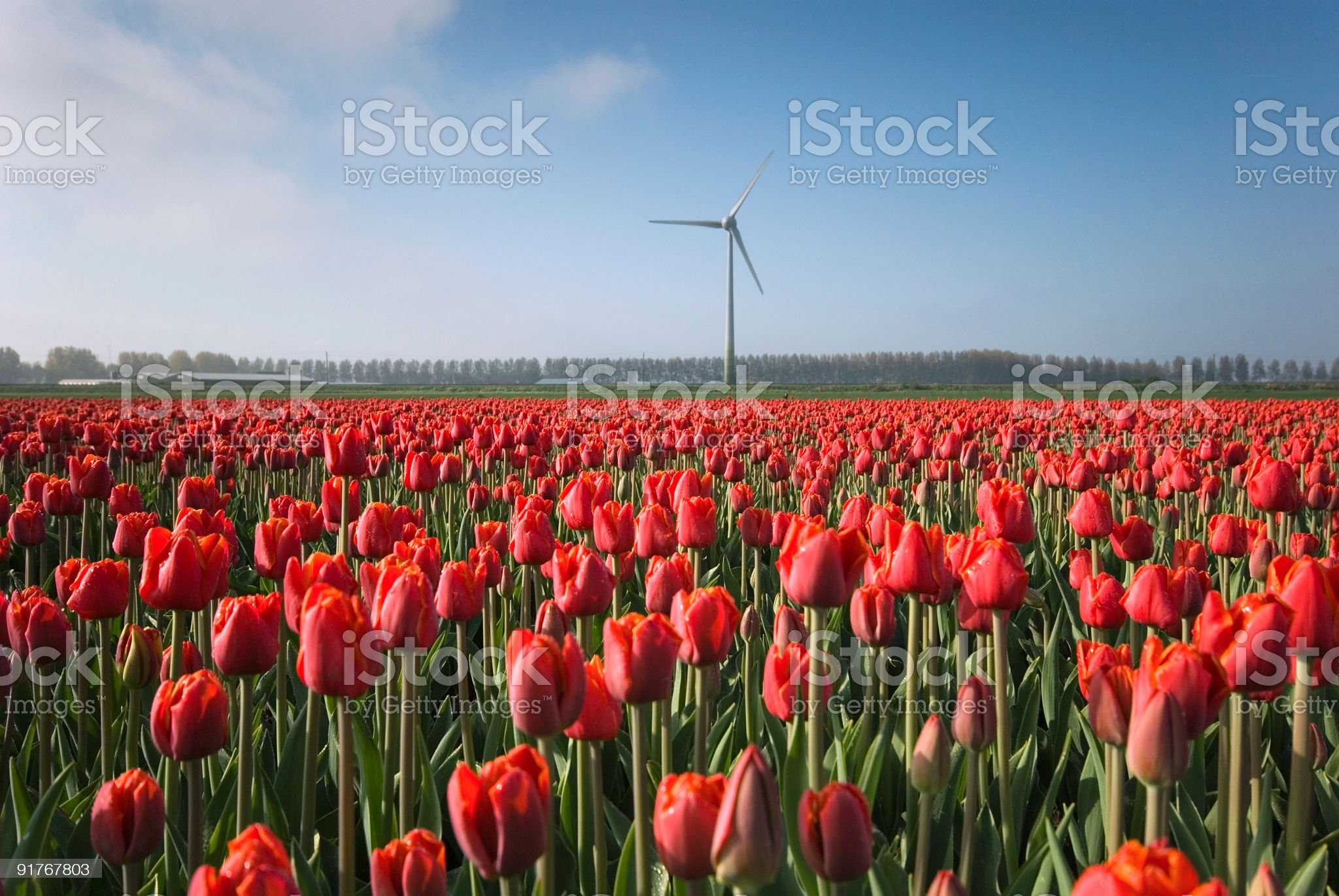 Power Generating Windmill royalty-free stock photo
