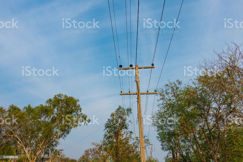 Power line in forest stock photo