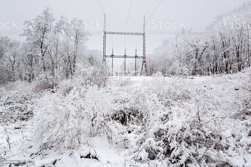 Línea de alimentación en invierno foto de stock libre de derechos