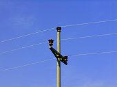 power line with a concrete pole