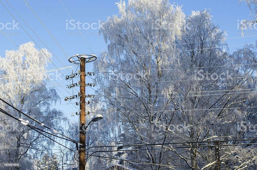 Power lines in winter royalty-free stock photo