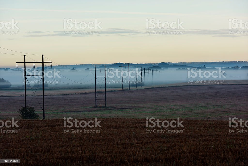 Power Lines Shrouded in Early Morning Mist stock photo