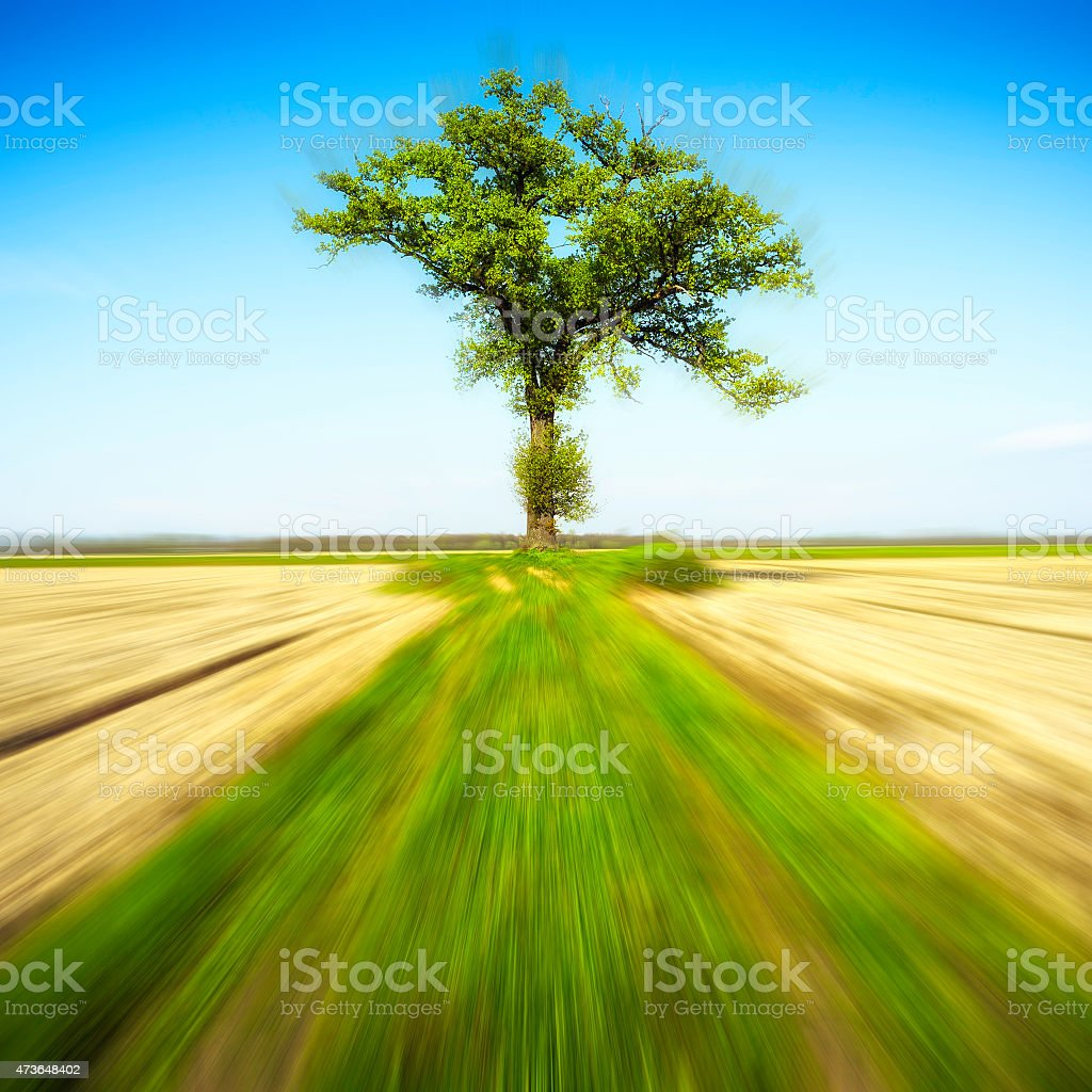 Power of the Nature. Color image stock photo
