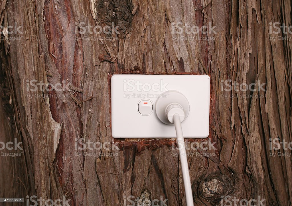 Power Plug in a Tree Trunk royalty-free stock photo