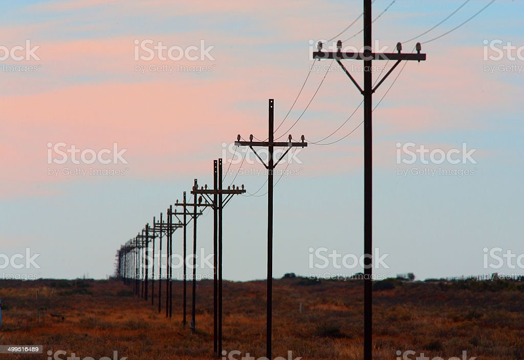 Power Poles in the Australian Outback, Northern Territory, Australia stock photo